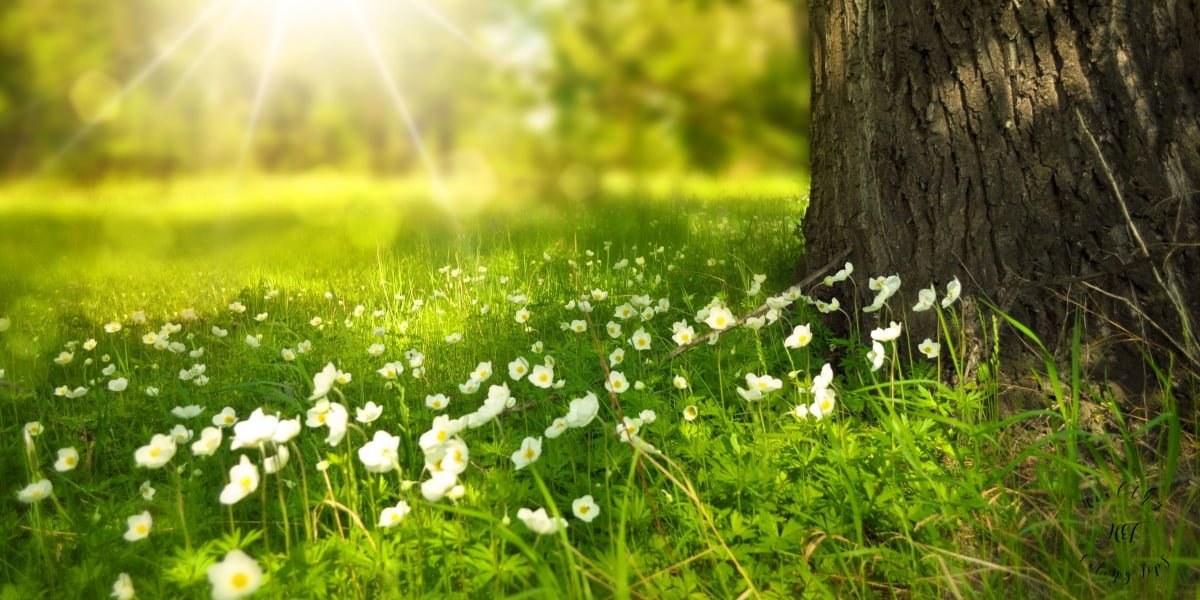 Easy Ways to Spend More Time Outdoors